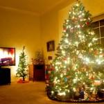 Weihnachtslieder gehören zu den Weihnachtsritualen wie Plätzchen, Weihnachtsbaum und Bescherung (Foto: JD Hancock).